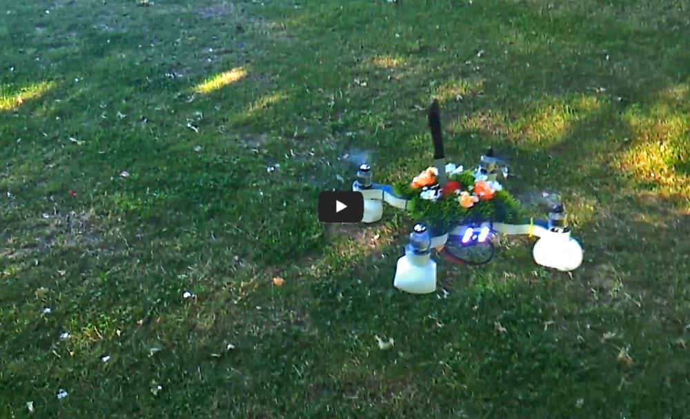 Sigma Altonaer Balkon Video