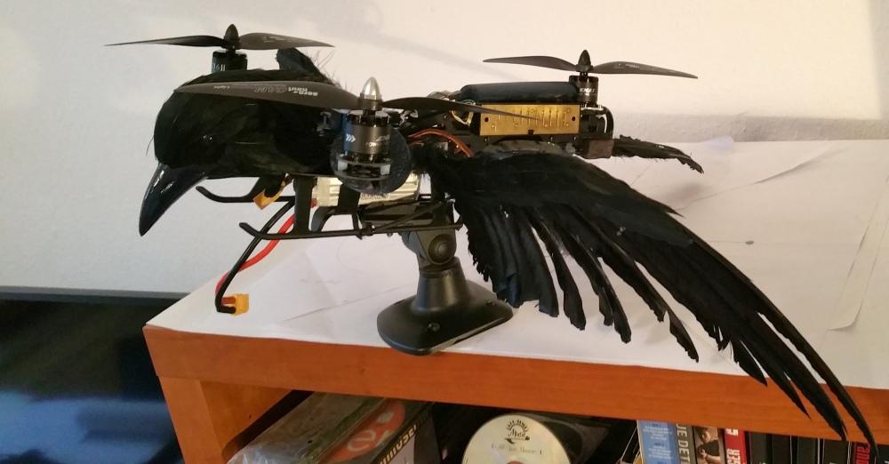 TriAngel-Pticon-Mestre 06 klein