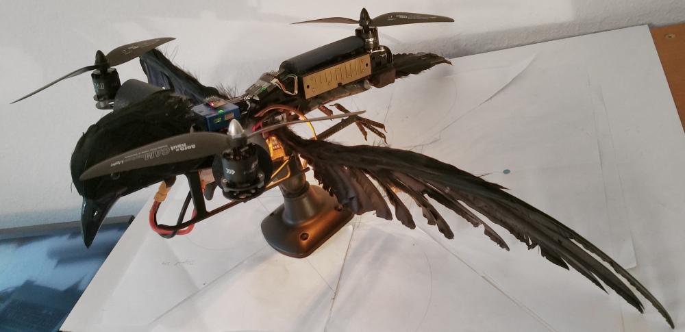 TriAngel-Pticon-Mestre 07 klein