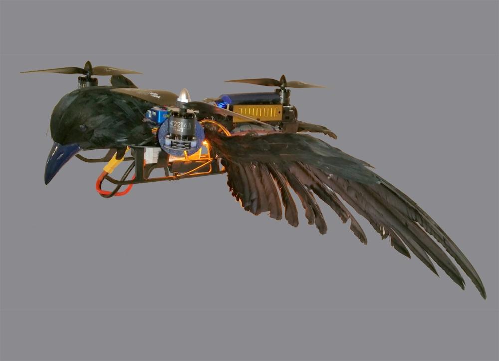 TriAngel-Pticon-Mestre 09 freigestellt klein
